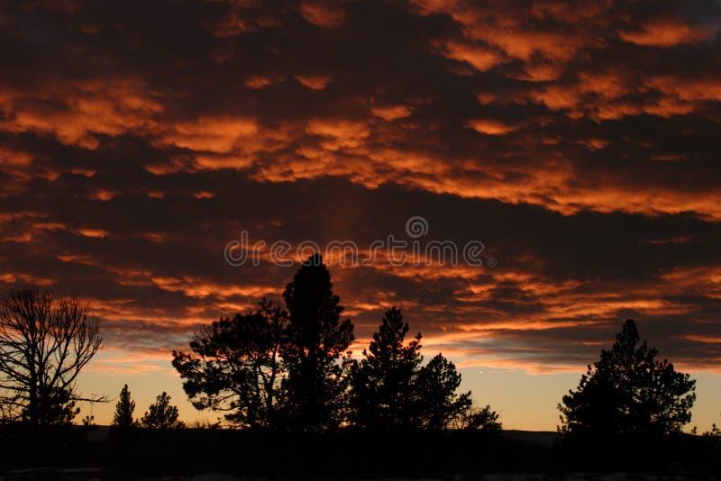 Coucher du soleil Shilhouette, Vedauwoo 1 images libres de droits