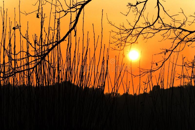 Coucher du soleil sur l'arête de la colline images libres de droits