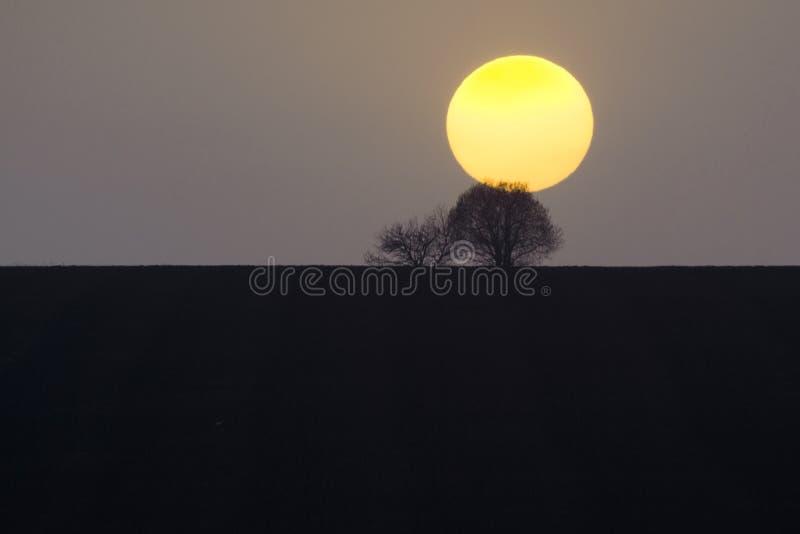 Coucher du soleil sur l'arbre et l'horizon photo stock