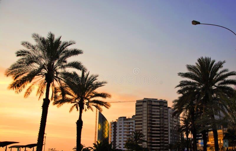 Coucher du soleil sur la côte de Miraflores Lima Peru photo stock