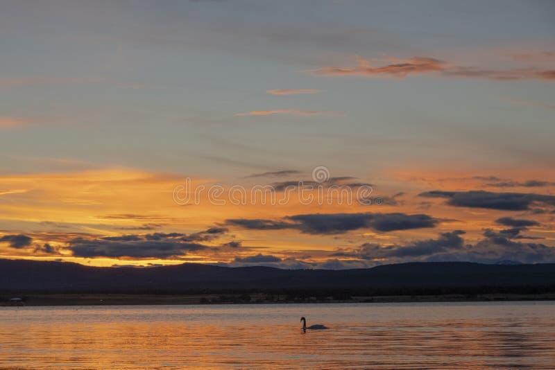 Coucher du soleil sur la c?te de Puerto Natales images stock