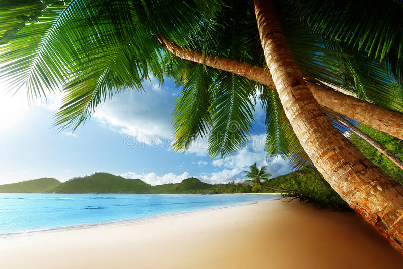 Coucher du soleil sur la plage, île de Mahe, Seychelles photos stock