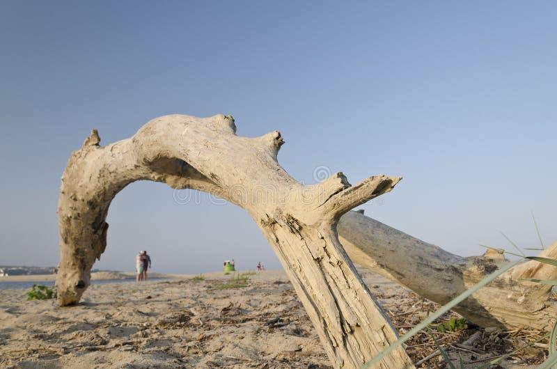 Coucher du soleil sur la plage dans Obzor photos libres de droits
