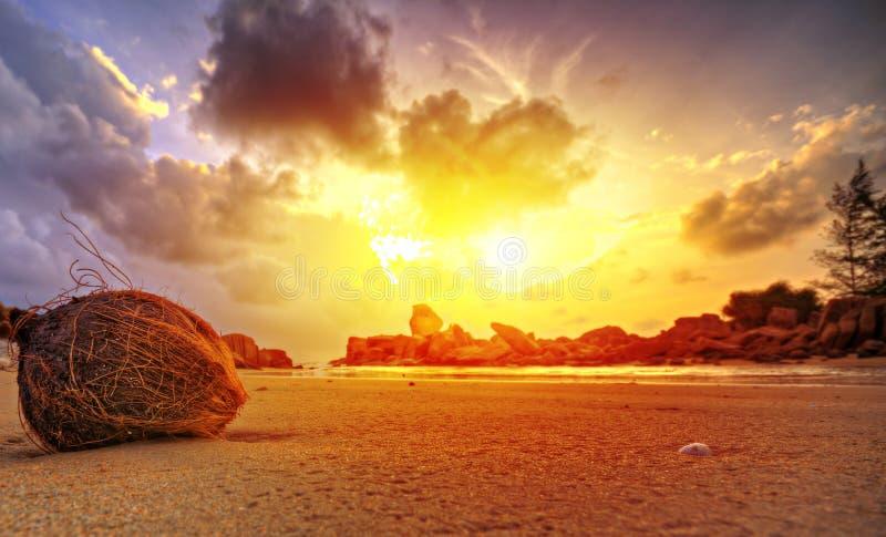 Coucher du soleil sur la plage tropicale image libre de droits