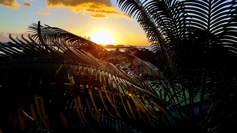 Coucher du soleil sur la ville Tahiti photo libre de droits