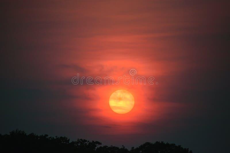 Coucher du soleil sur le lac pendant l'été image libre de droits