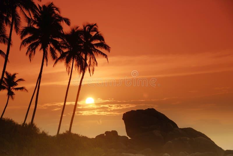 Coucher du soleil sur le Sri Lanka photographie stock libre de droits