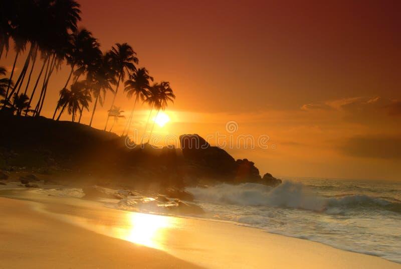 Coucher du soleil sur le Sri Lanka photo libre de droits