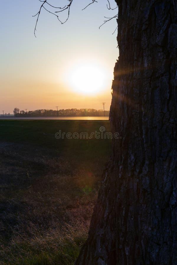 Coucher du soleil sur les prairies photo stock