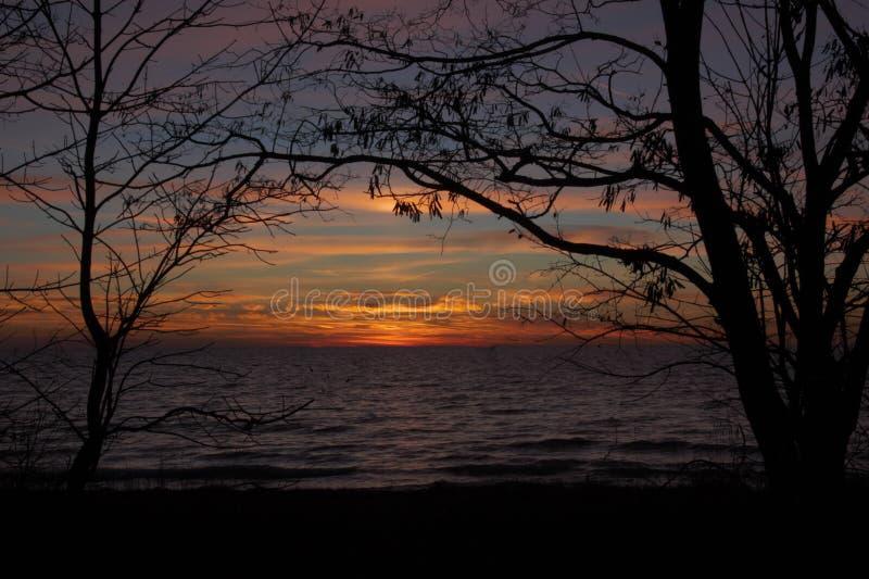 Coucher du soleil tiré par des arbres avec le ciel orange images stock