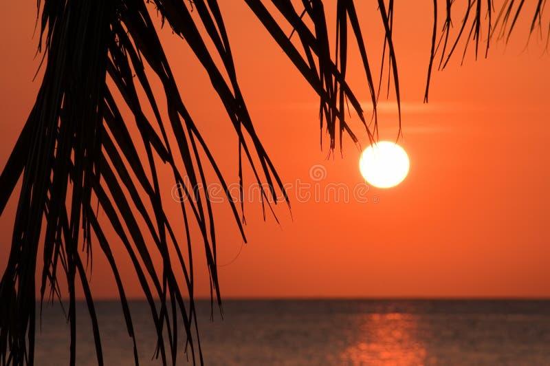 Coucher du soleil tropical au-dessus de mer photo libre de droits
