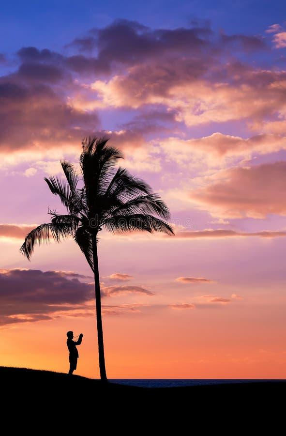 Coucher du soleil tropical avec des silhouettes images libres de droits
