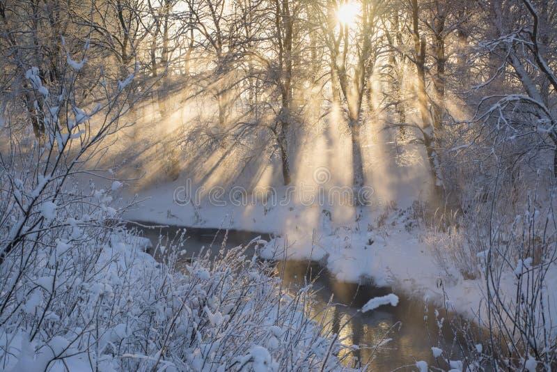 Coucher du soleil un jour givré photo libre de droits