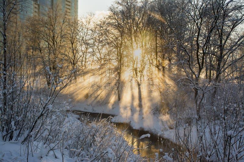 Coucher du soleil un jour givré photographie stock