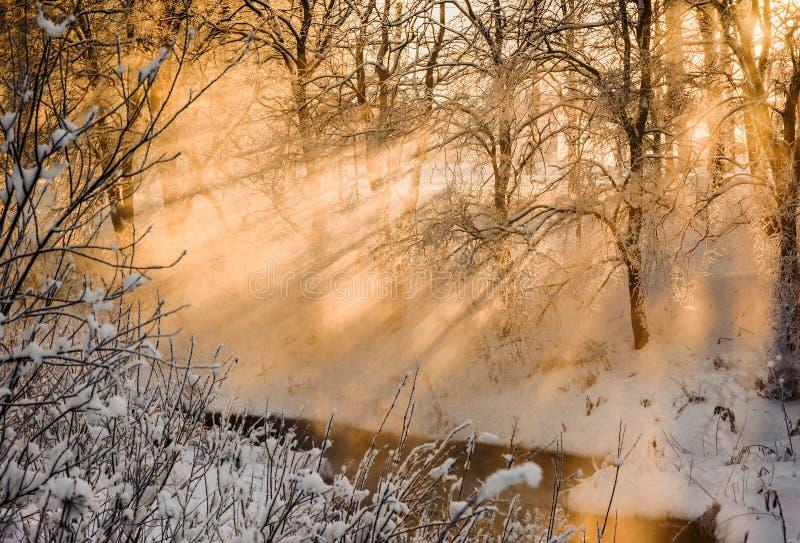 Coucher du soleil un jour givré images stock