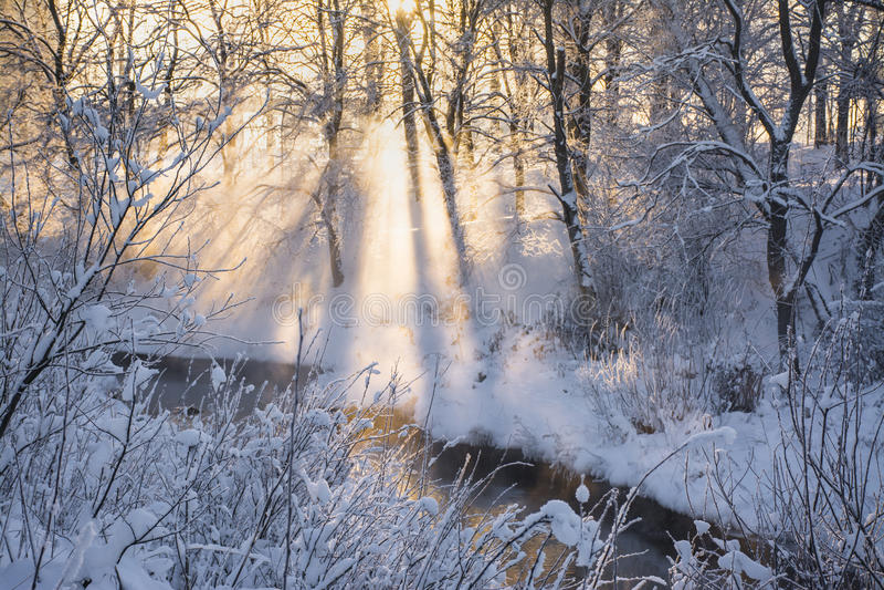 Coucher du soleil un jour givré photos stock