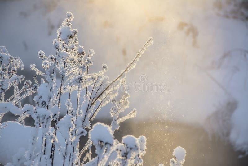 Coucher du soleil un jour givré photographie stock libre de droits