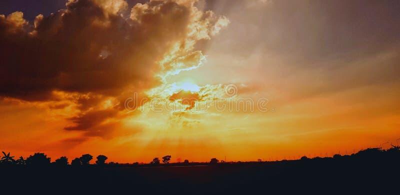 Couchers du soleil de paysage de silhouette Beau champ de blé dans le coucher du soleil photos stock