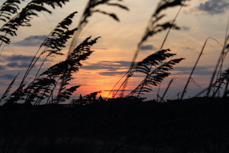Couchers du soleil et silhouettes à la plage d'île d'océan photographie stock libre de droits