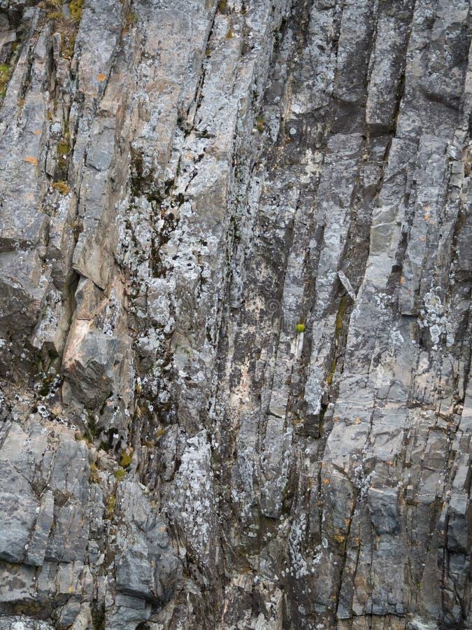 Couches verticales de roche avec de la mousse photographie stock libre de droits