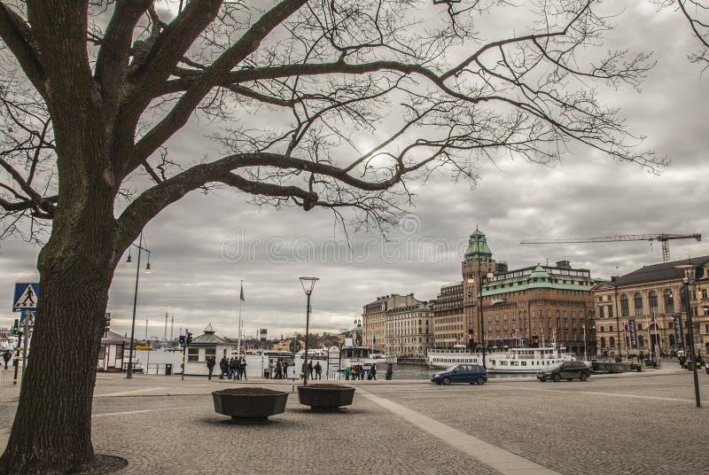 Coudy天,斯德哥尔摩,瑞典 图库摄影