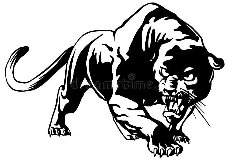 cougar vector illustratie