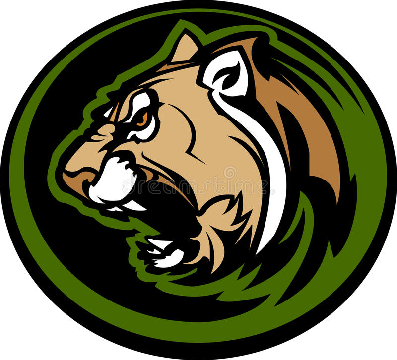 Cougar Mascot Head Graphic Royalty Free Stock Image