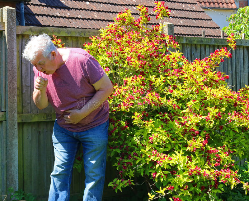 Coughing, colds, influenza or smokers cough. A senior man outside and coughing. Bad chest and lungs through smoking. Cold or flue royalty free stock photo