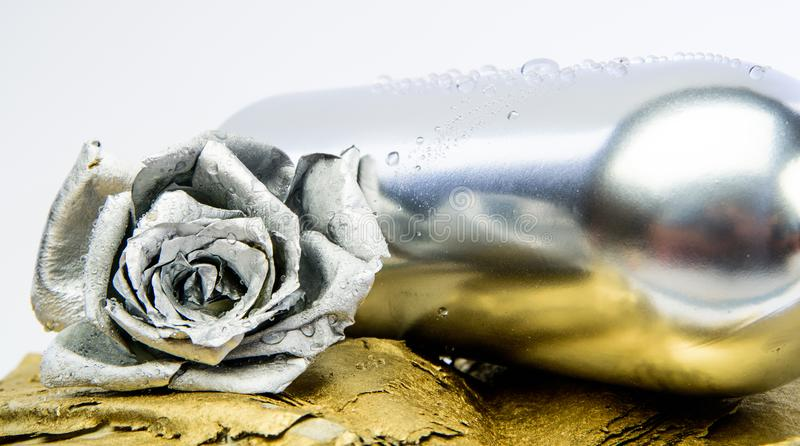 Couleur argentée métallique Concept d'?tablissement vinicole Vin floral Fleur en métal dans la bouteille argentée en acier Pièce  images libres de droits
