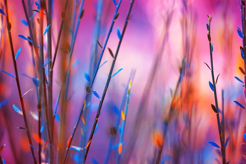 Couleur background images stock