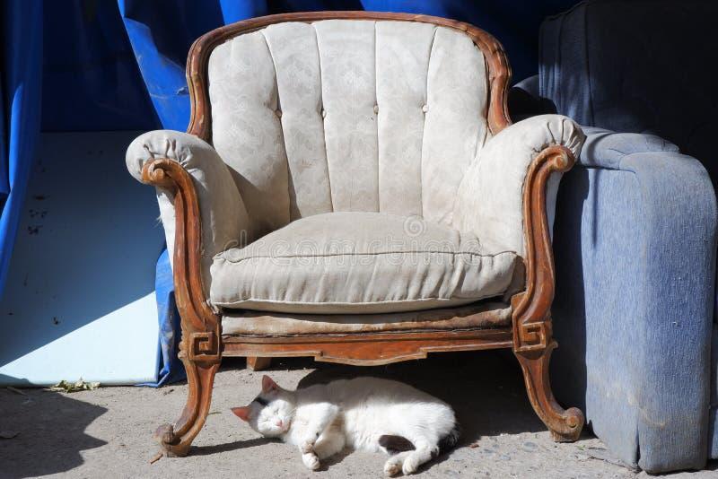 couleur beige de vieille chaise avec les panneaux en bois sur les peintures bleues de fond, sous les mensonges de siège et le cha image libre de droits