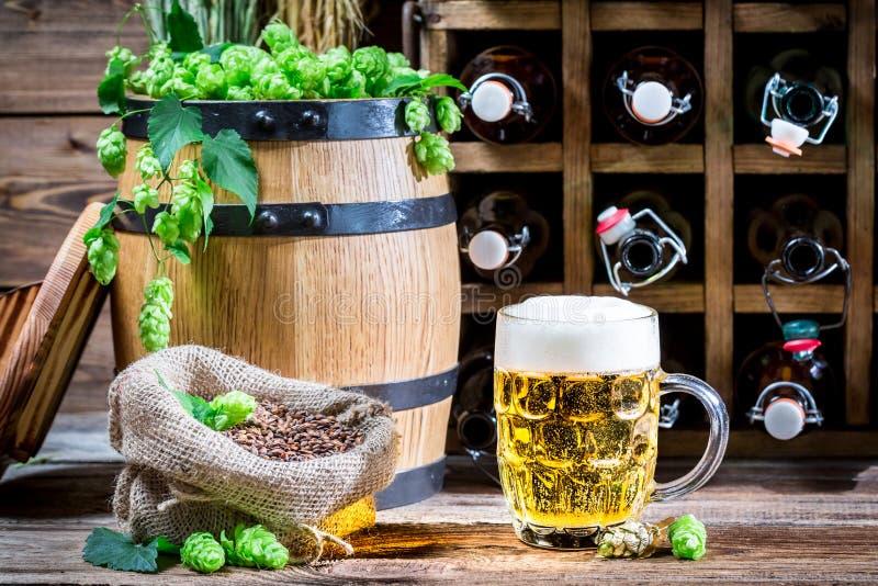 Couleur d'or de bière et des houblon verts frais image libre de droits