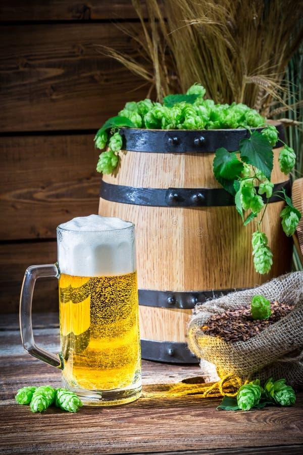 Couleur d'or des bières blondes images stock