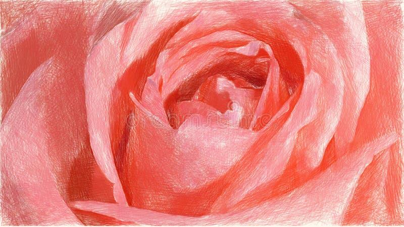 Fond Rose De Couleur De Fleur Illustration Stock