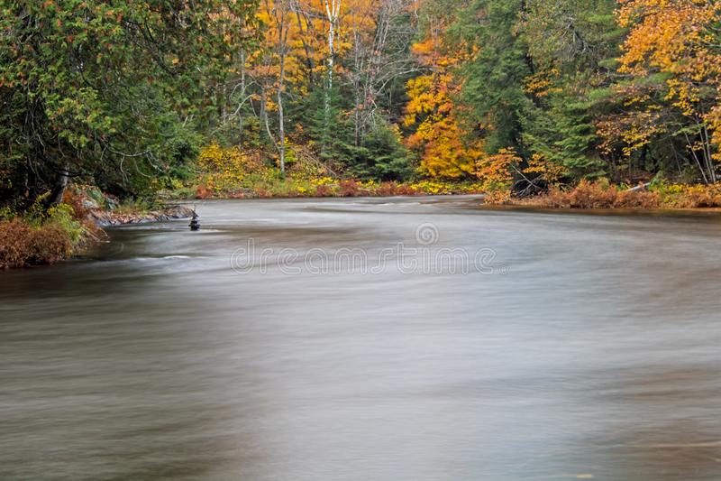 Couleur de tour de feuilles le long de la rivière d'Oxtongue photos libres de droits