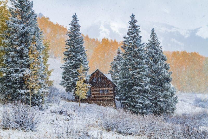 Couleur et neige de chute dans le Colorado photos stock