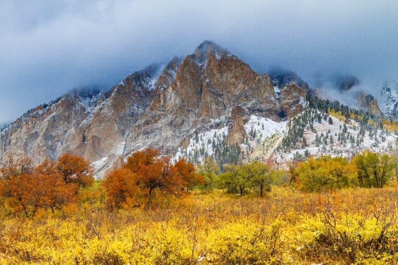 Couleur et neige de chute dans le Colorado image libre de droits