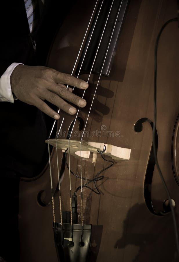 Couleur filtrée par cru de musicien jouant la double basse photographie stock