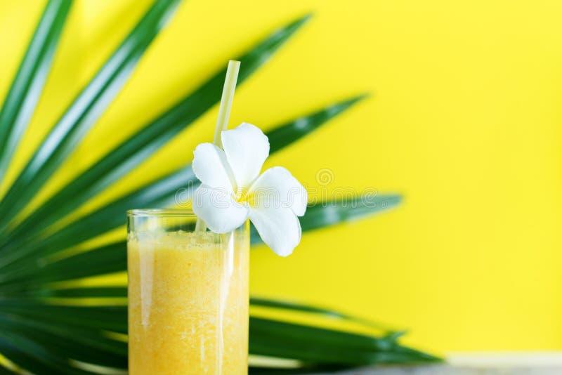 Couleur fraîche Juice Smoothie Tropical Palm Leaf image libre de droits