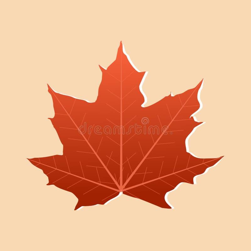 Couleur orange de feuille d'érable d'Autumn Single d'isolement sur le fond orange mou illustration de vecteur de conception illustration de vecteur