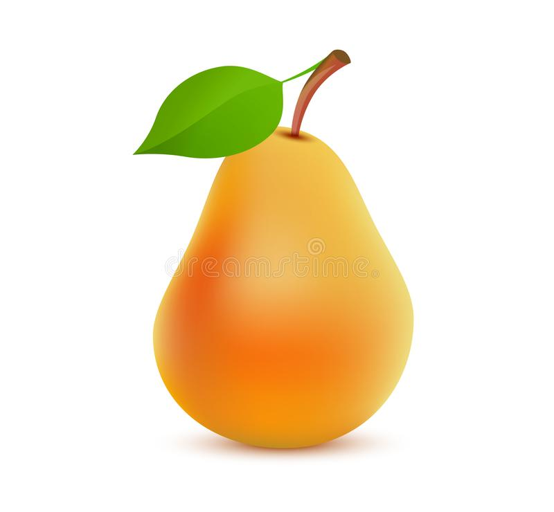 Couleur orange entière simple de poire sur le fond blanc - illustration réaliste de vecteur du fruit juteux savoureux illustration de vecteur