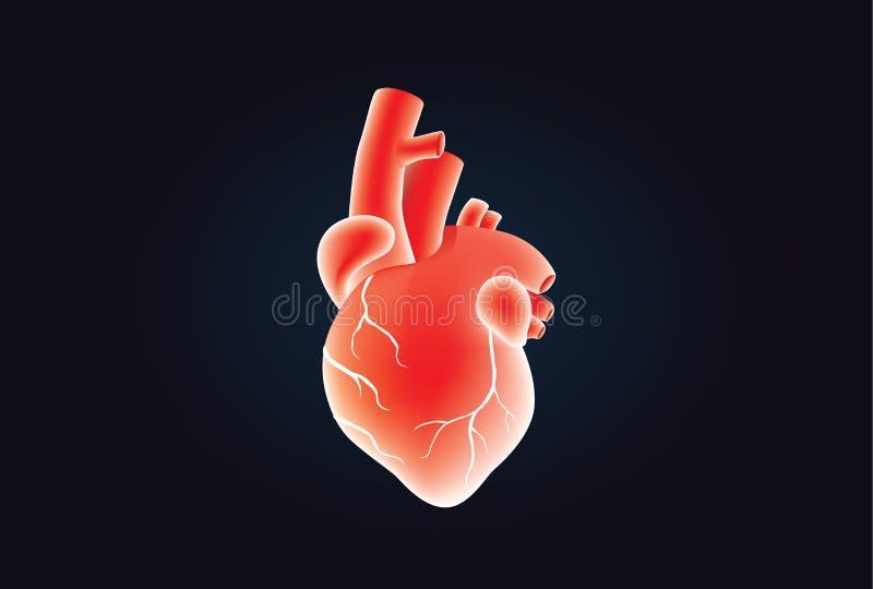 Download Couleur Rouge De Vecteur Humain De Coeur Sur Le Noir Illustration de Vecteur - Illustration du objet, humain: 87705723