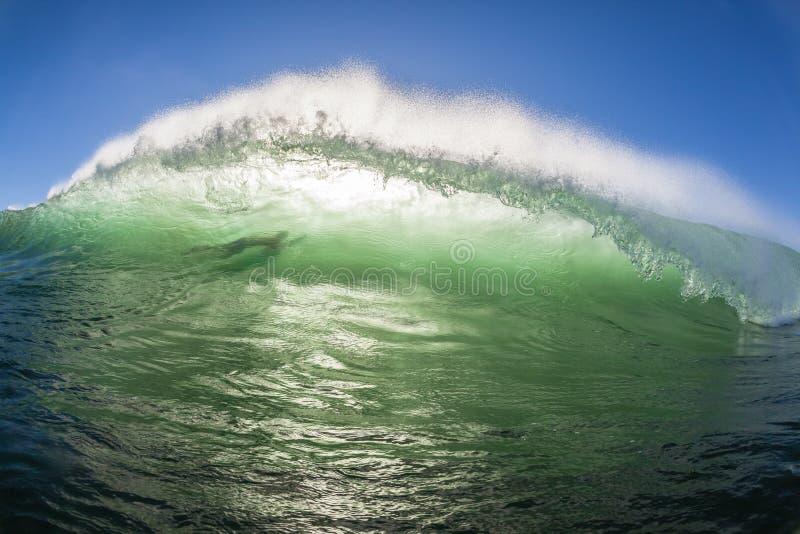 Couleur silhouettée par eau du fond de surfer de vague photos stock
