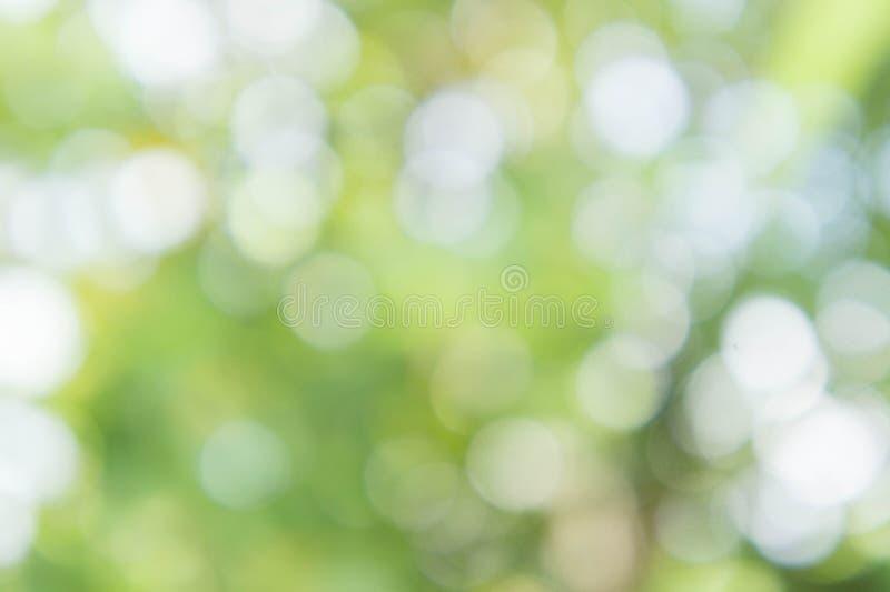 Couleur verte de texture de tache floue abstraite de nature et backgr de nature de bokeh images stock