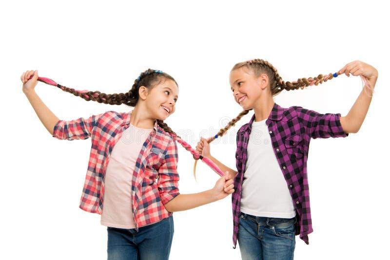 Couleurs d'amusement de cheveux de colorant Maintenez les cheveux tress?s pour le regard rang? Élèves avec de longs cheveux tress photographie stock libre de droits