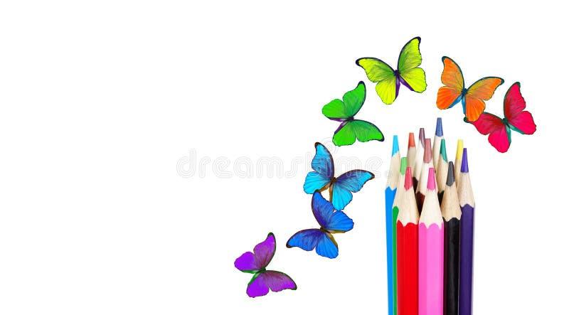 Couleurs d'arc-en-ciel crayons colorés et papillons multicolores de morpho Concept de couleur photo stock