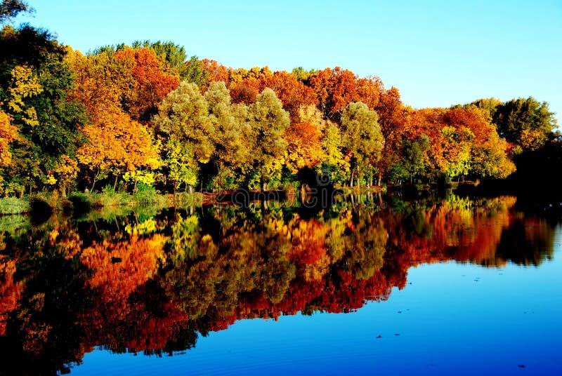 Couleurs d'automne image libre de droits