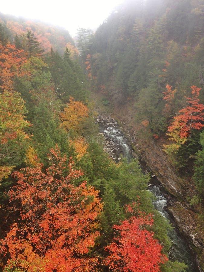 Couleurs d'automne du Vermont de gorge de Queechee photo stock