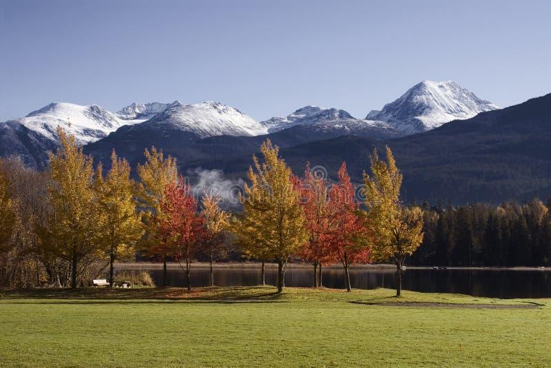 Couleurs d'automne en stationnement de l'arc-en-ciel du siffleur image stock
