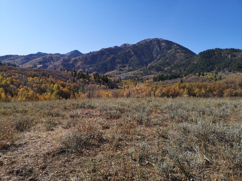 Couleurs d'automne paysage à la tête de train de Sardine Peak photo stock